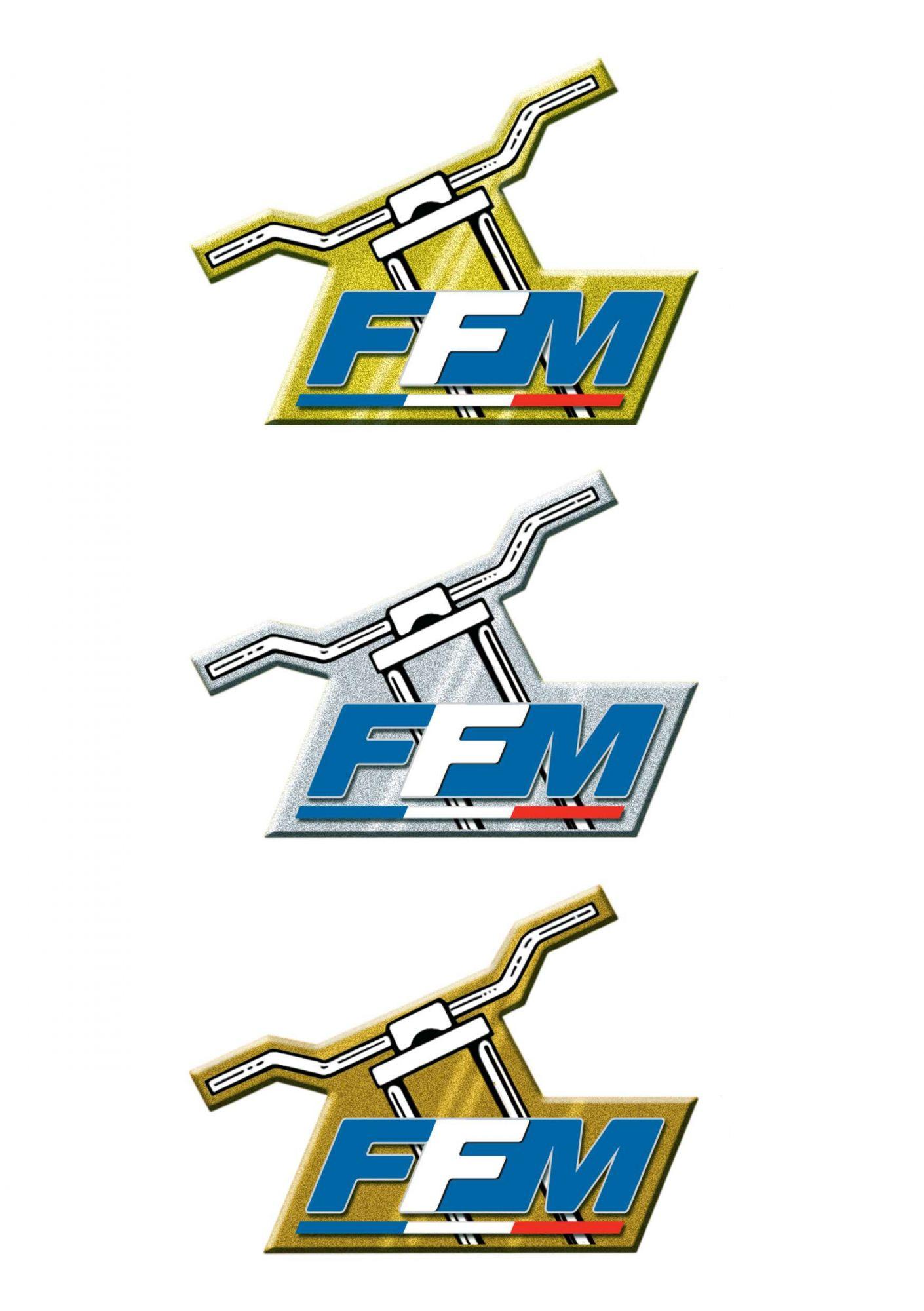 guidons-ffm-pins