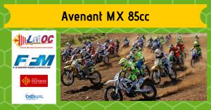 Avenant MX 85cc